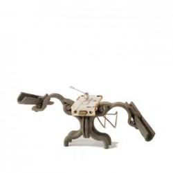 Vogelspin-325-1-250x250